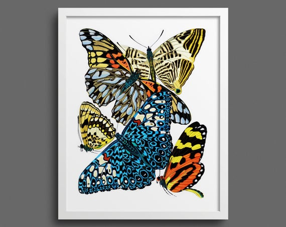 Papillons by EA Seguy - plate 3