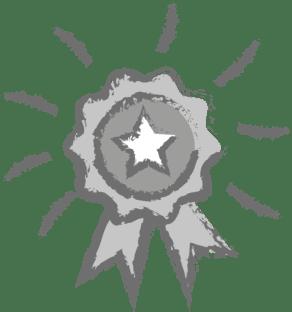 Silver rosette icon