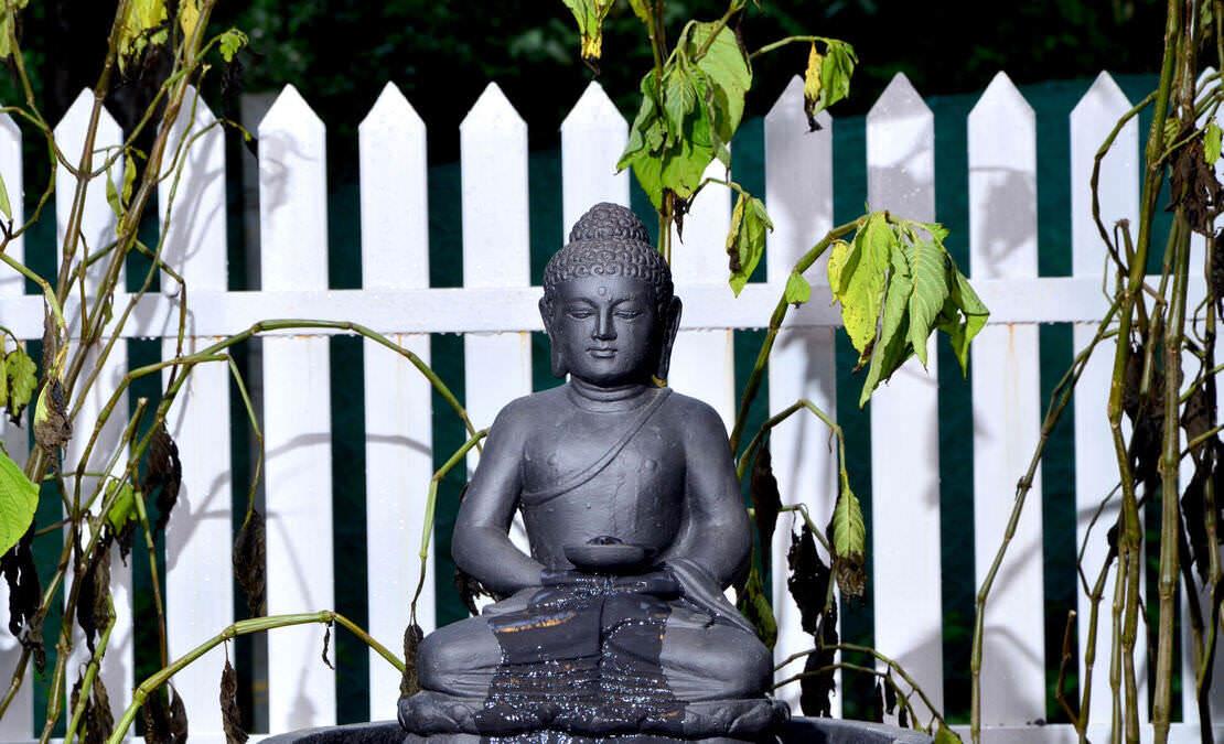 Vitrag Group Fulbari Symbol of peace- Buddha