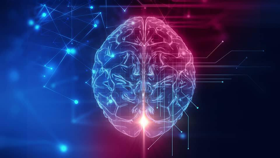 12 Neuroscience Breakthroughs That Will Help Improve Your Training