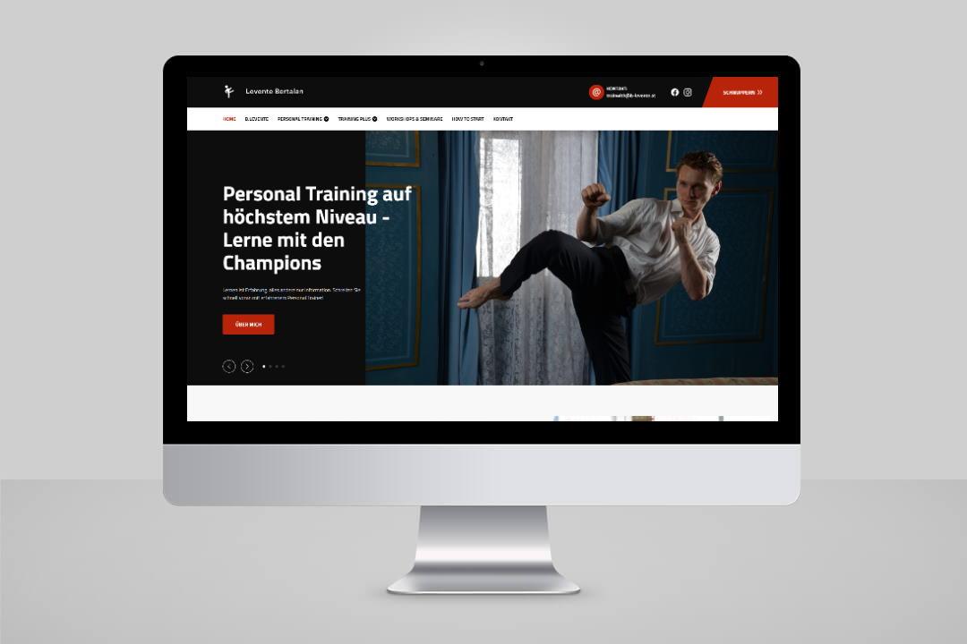 Project Levente Bertalan, Website Design, Programming