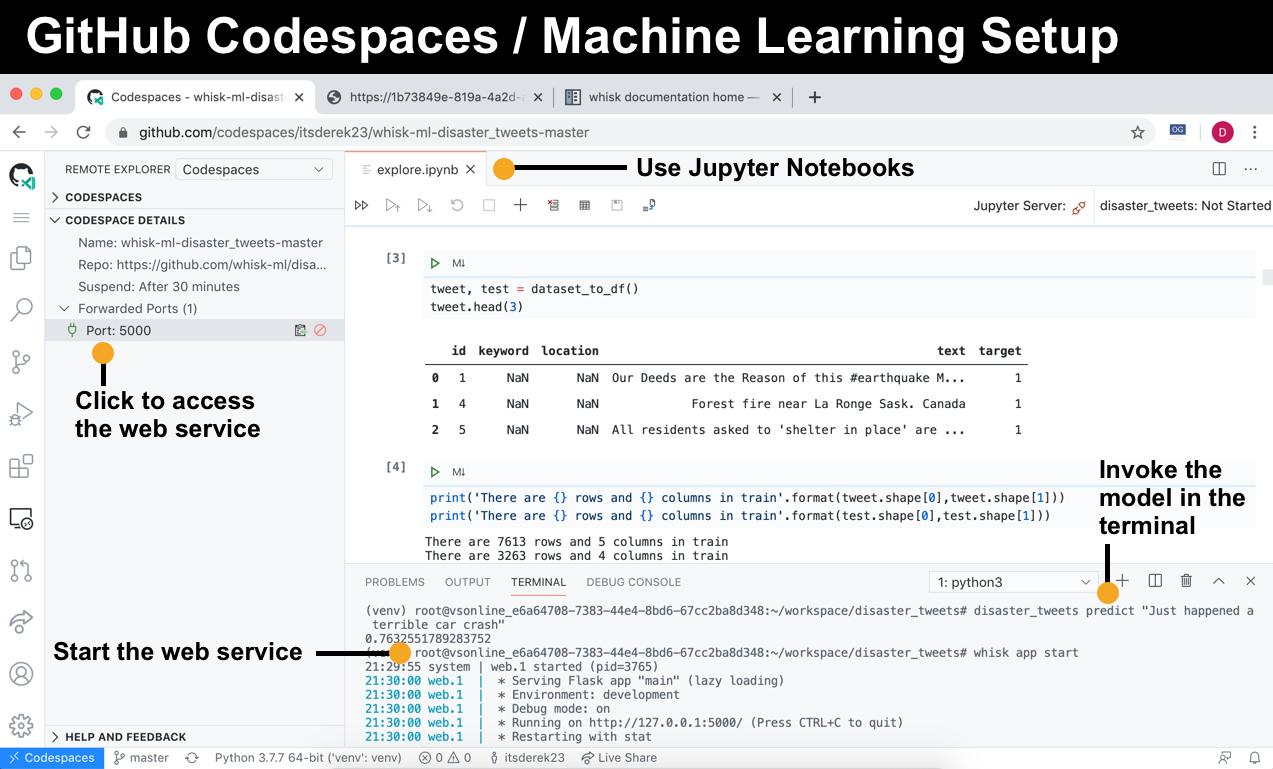 github_codespaces_screenshot