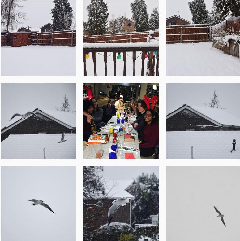 A collection of snowy photos