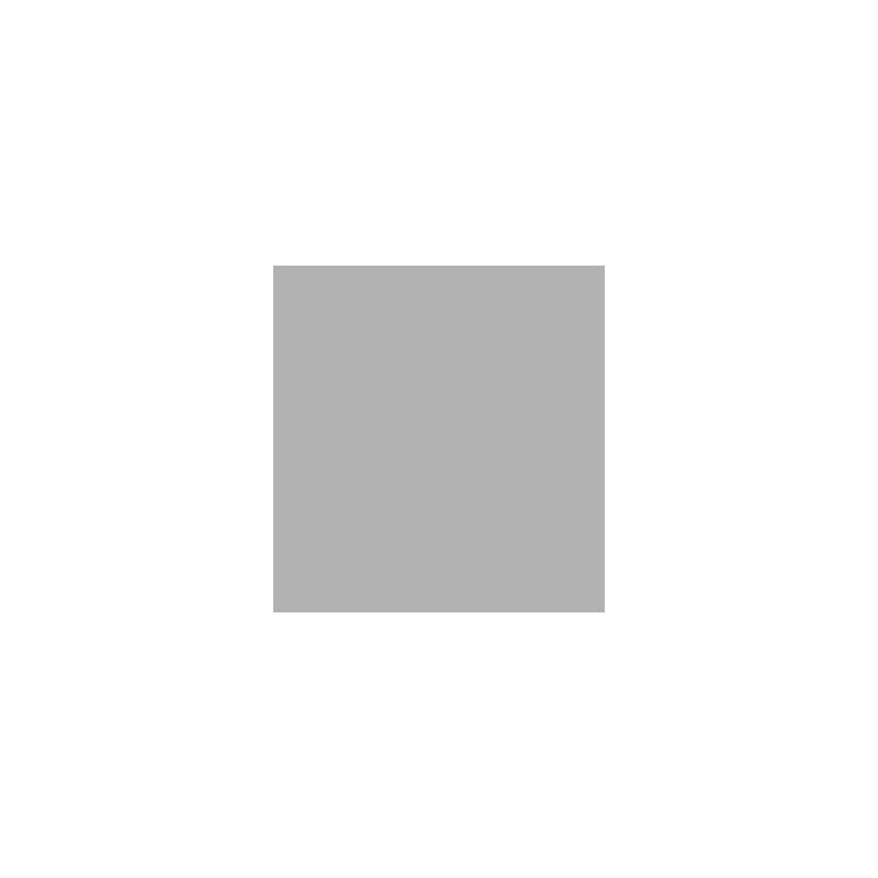 logo Theory 11