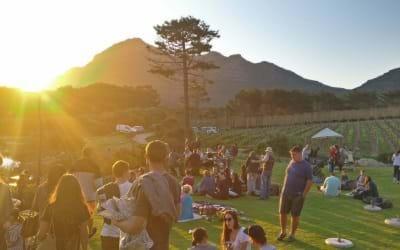 Noordhoek - cape point vinery