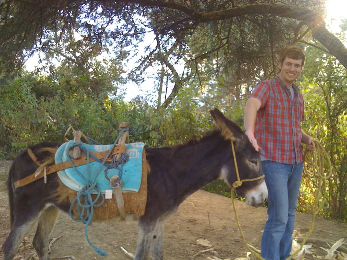 me and a donkey