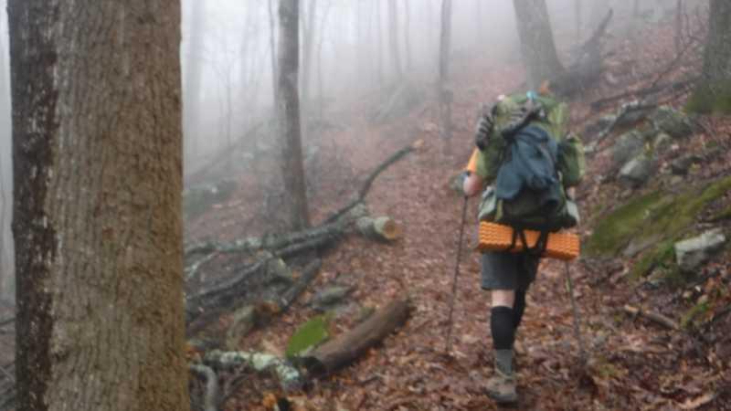 Bird Mountain Trail
