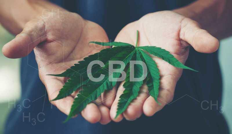 How CBD helps treat anxiety disorders.