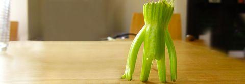 Celery stalk resembling a human shape