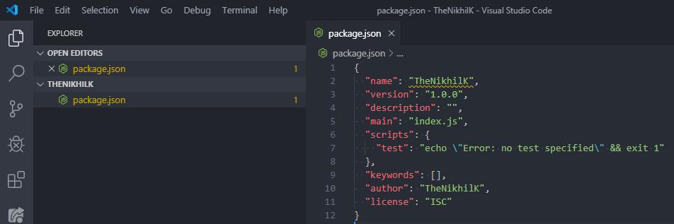 npm init output