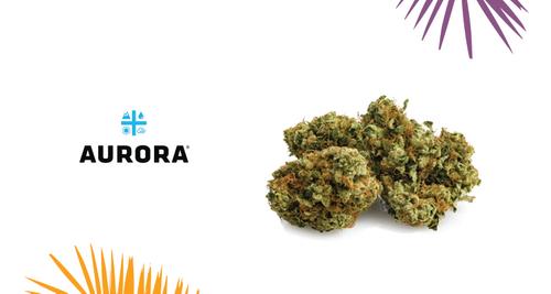 Aurora – MK Ultra Strain