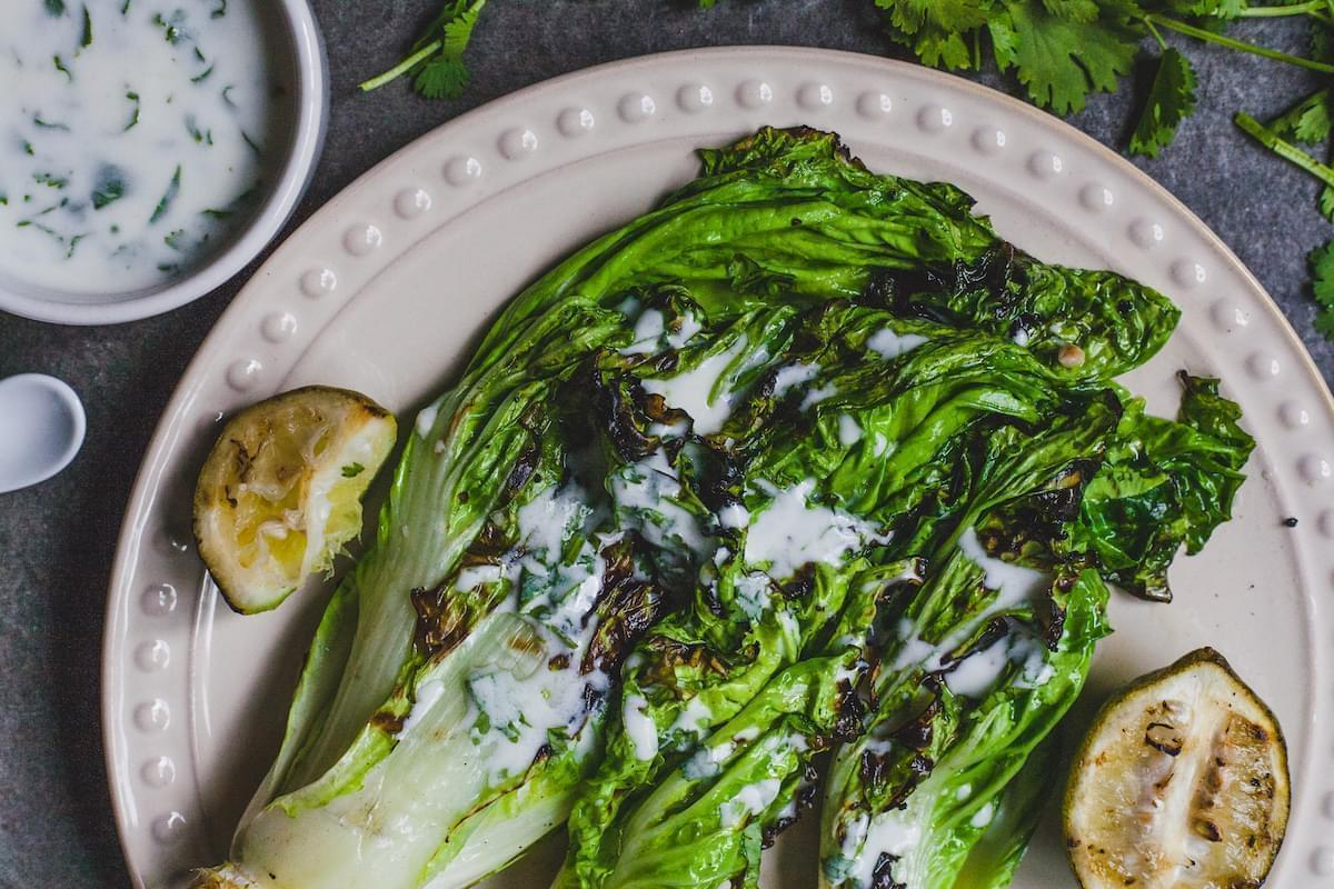 Grilled Romaine Lettuce With Cilantro Lime Yoghurt Dressing