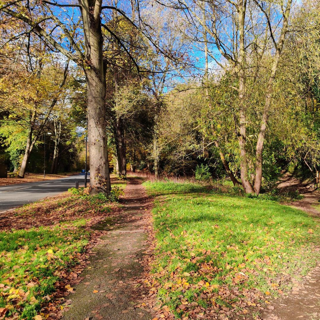 Gledhow Valley Woods path by road