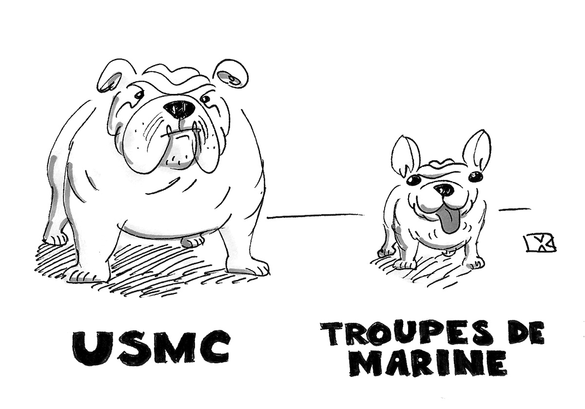 (USMC Bulldog stands next to Troupes de Marine Spanish Bulldog.)