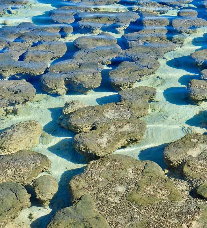 Stromatolites Version 2