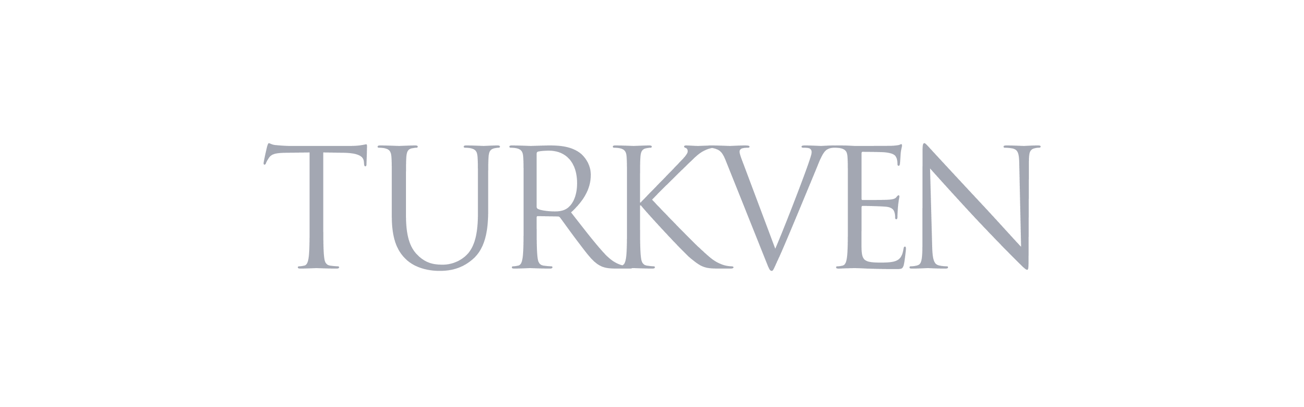 Technology & product due diligence | Code & Co. advises TURKVEN (logo shown)