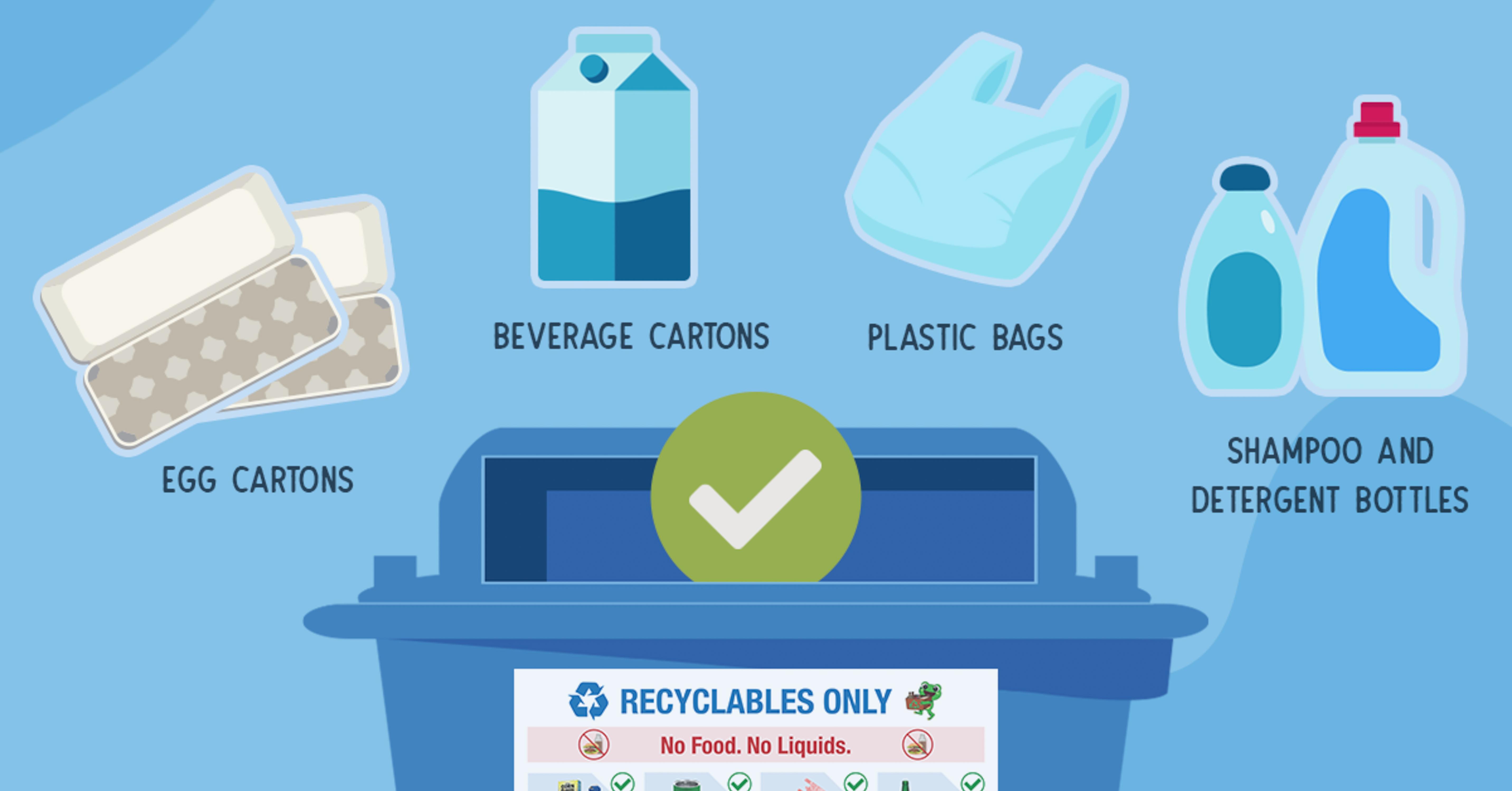 blue bin should infographic