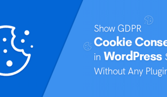 Thumbnail of Show GDPR Cookie Consent in WordPress Without Plugin in 3 Easy Steps