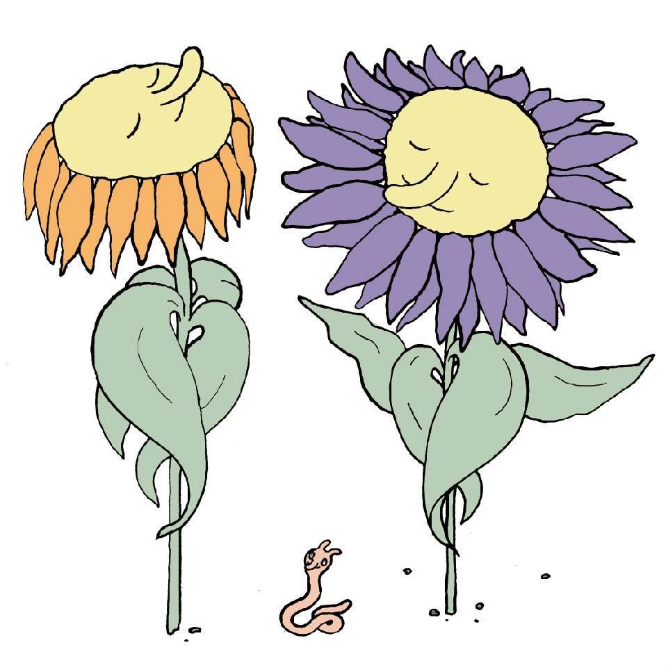 Auf der Illustration sind zwei Sonnenblumen zu sehen, die sich mit ihren Blättern selbst umarmen.