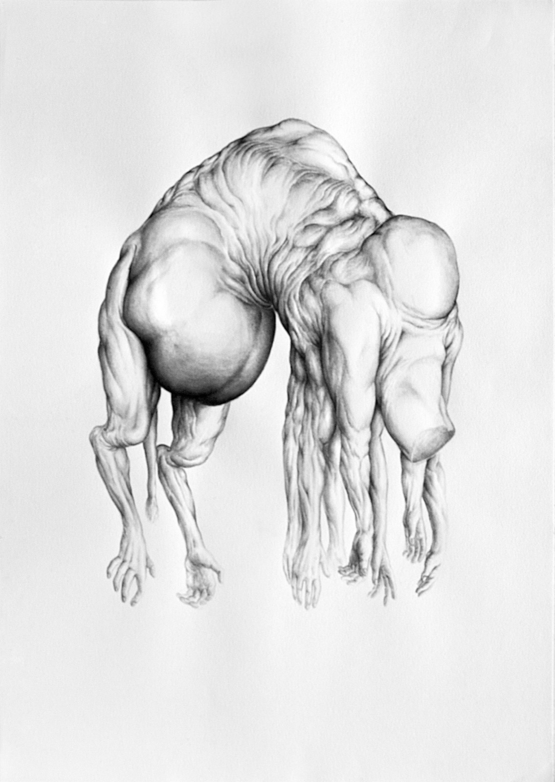Planktonian People I, 2013, ink on paper, 16.5(h) x 23.25(w) inches