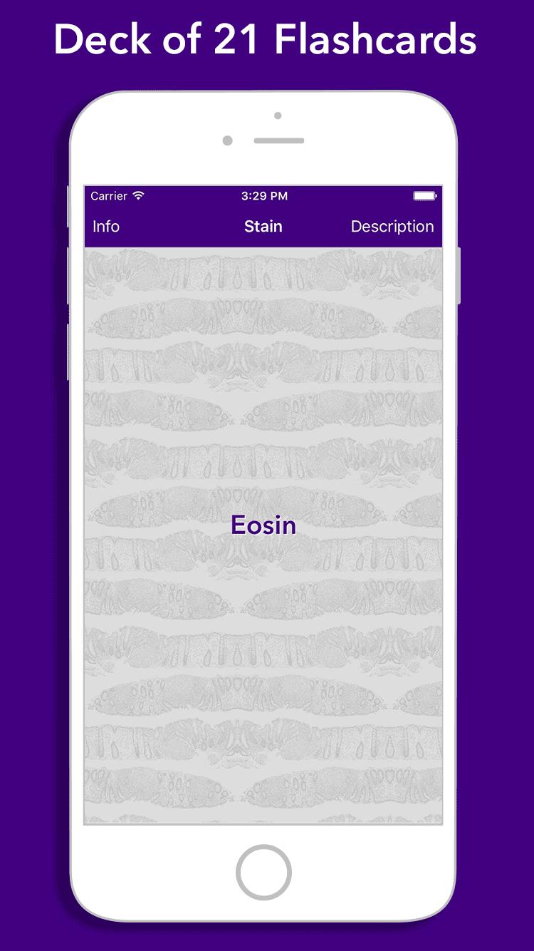Image of FlashKarte Histology Stains
