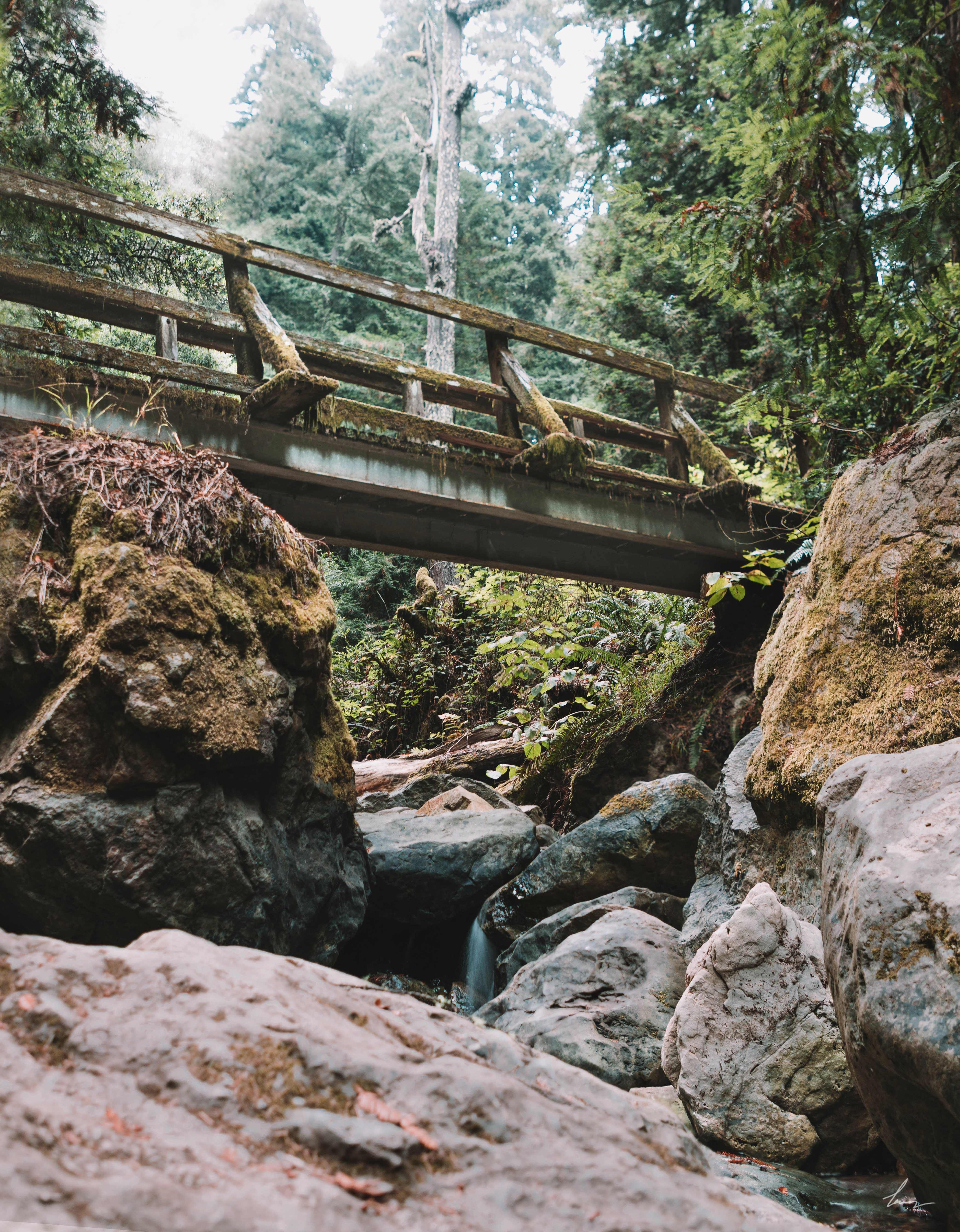 Steep Ravine Trail - Marin, California
