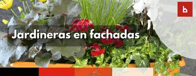 ¿Las jardineras en fachadas son elementos comunes?