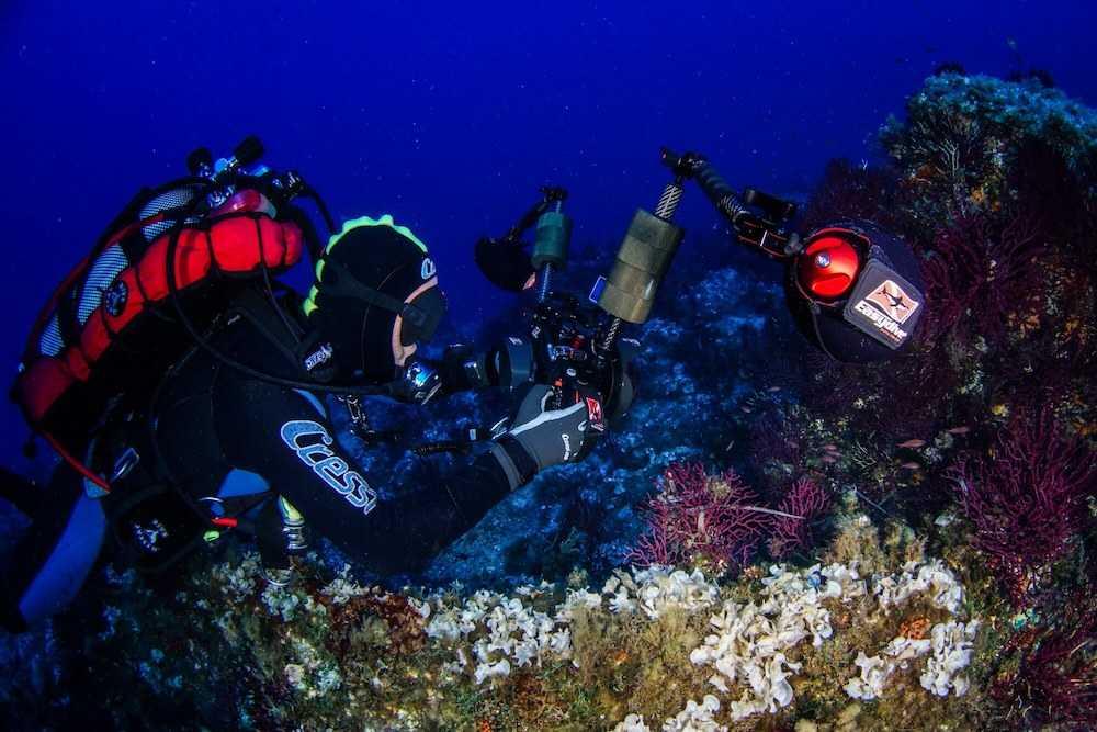 fotografie in fondo al mare