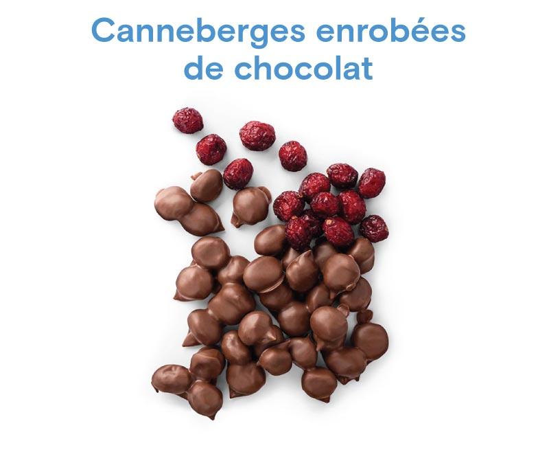Chocolat Canneberges