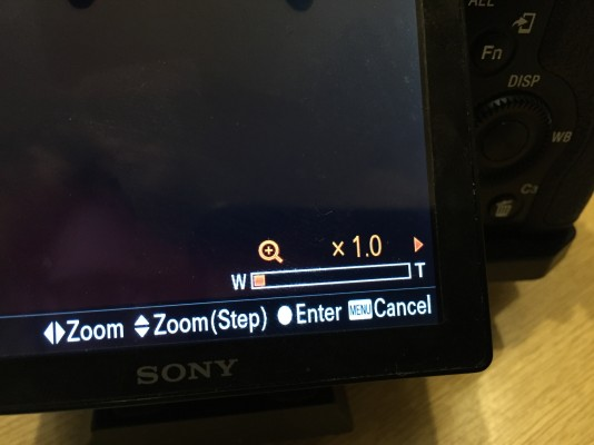ClearImage Zoom indicator
