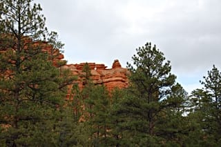 Red Canyon State Park