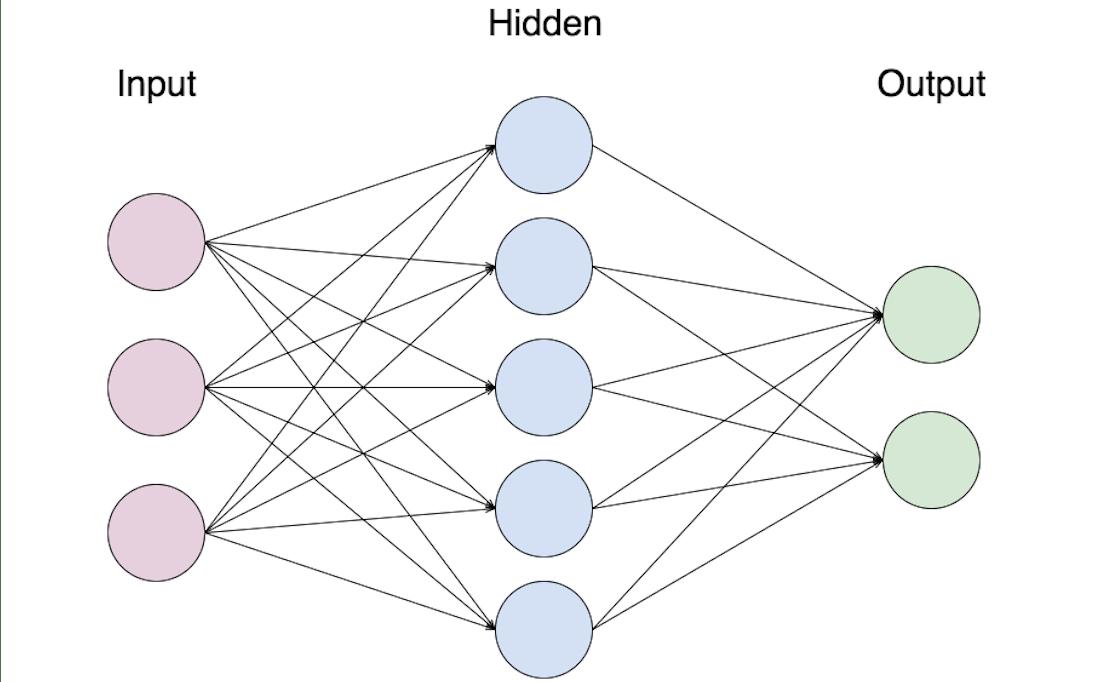 neuronal network scheme