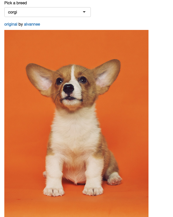 An app that displays cute pictures of puppies using `renderImage()`. See live at <https://hadley.shinyapps.io/ms-puppies>.