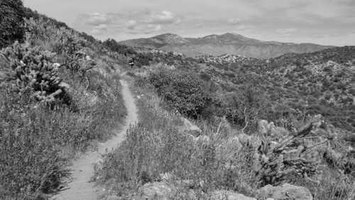 Tengo Hambre on the trail