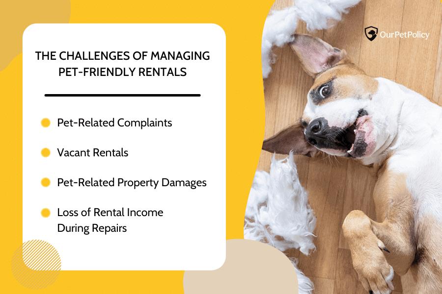 Challenges of Managing Pet-Friendly Rentals