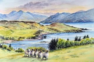 Tups Saasaig Isle of Skye