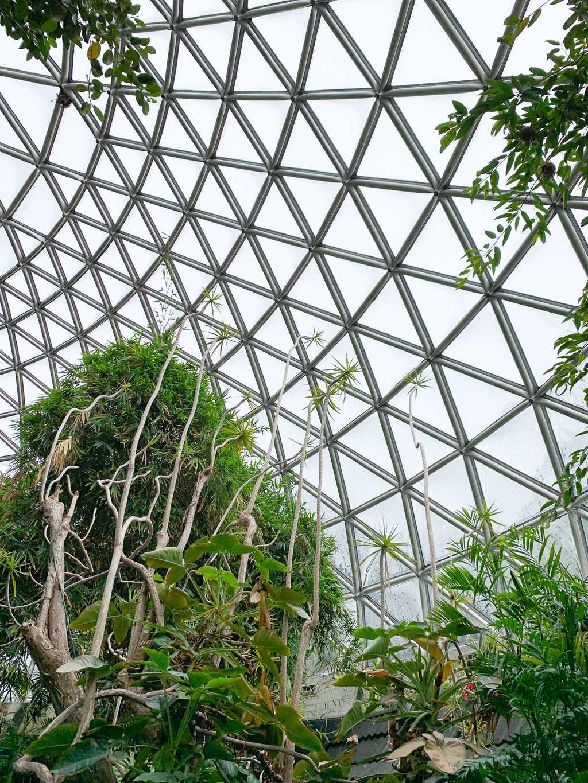 Bloedel Conservatory, Vancouver