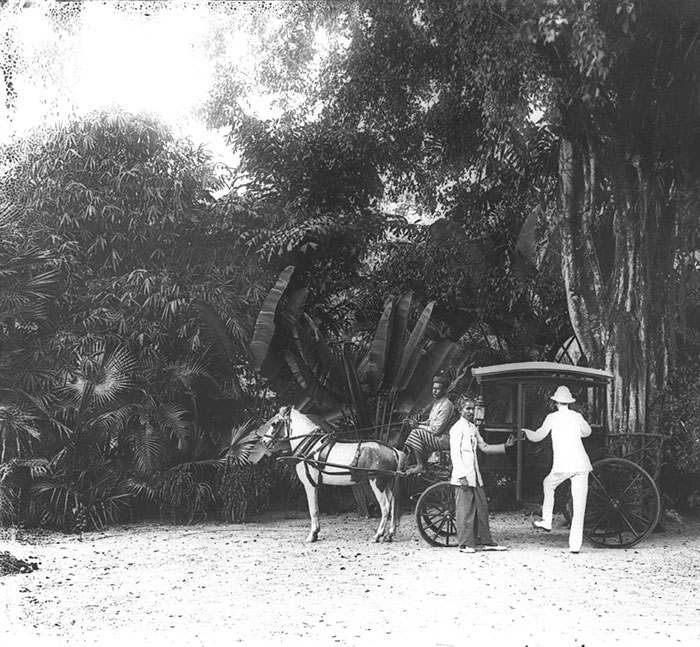A horse-drawn carriage, 1900s