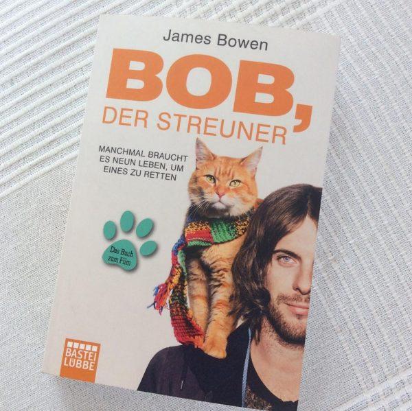 Bob, der streuner. или один мужик и один котик.