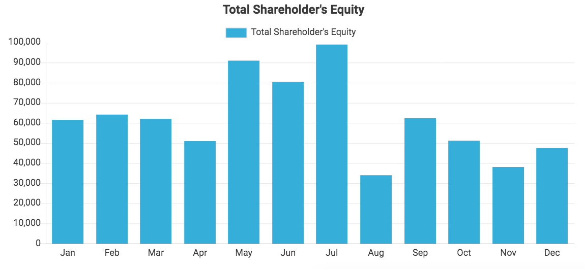 Custom QuickBooks chart showing Total Shareholder's Equity