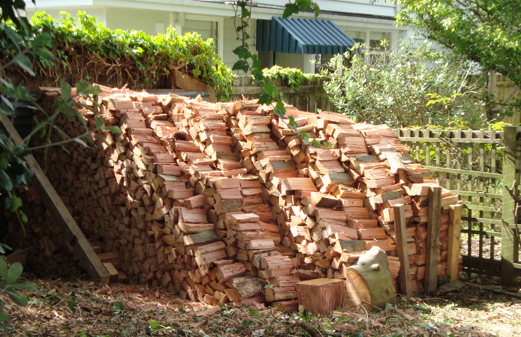 Stacked dry firewood in Auckland