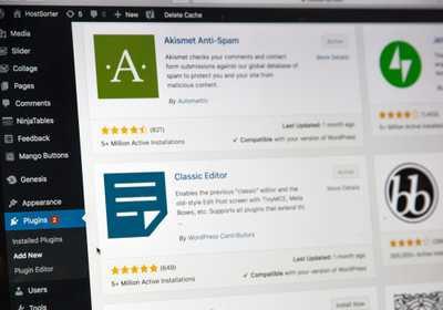 Wordpress plugins updated by professionals