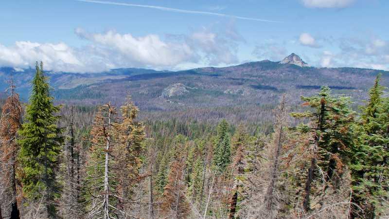 View of Union Peak