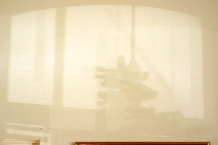 Shadow of the Christmas tree
