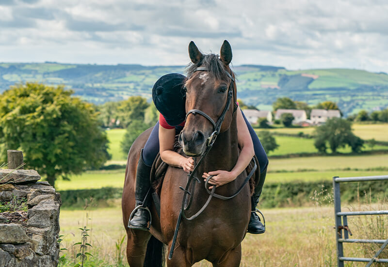 5 Common queries from new ex-racehorse owners