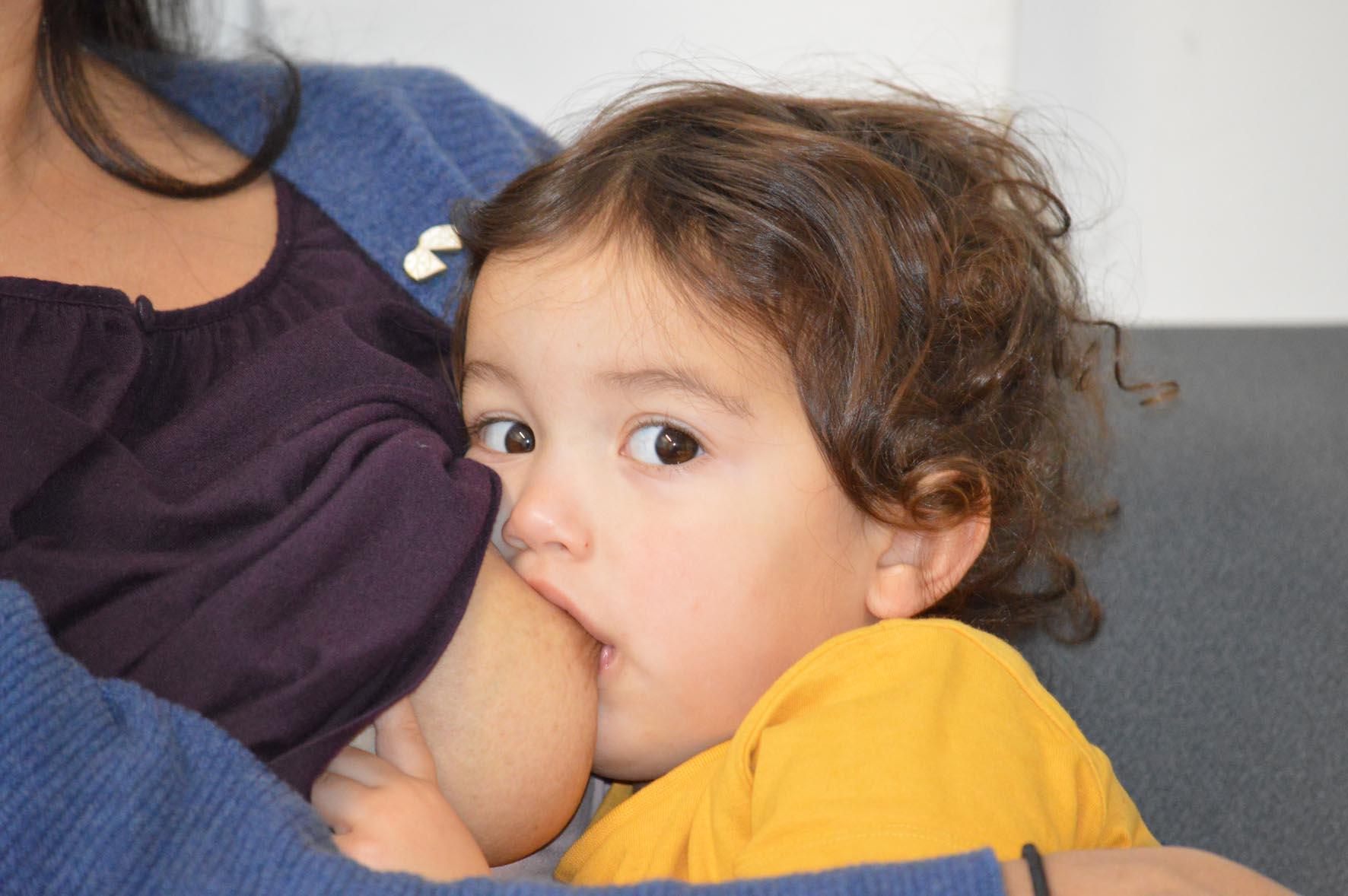 Photograph of toddler breastfeeding