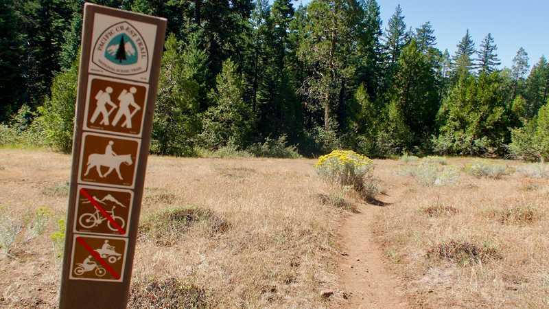 The PCT with a trail marker