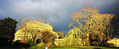 A day in Dublin - The Perfect Sunday - Botanic Gardens