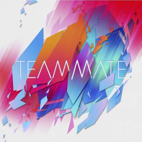 album art for Teammate by Teammate
