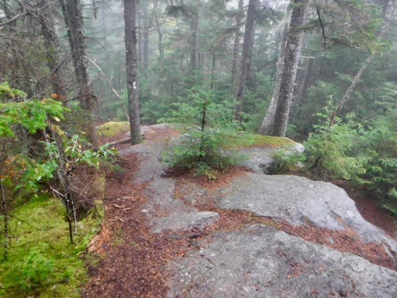 Foggy descent on rocks